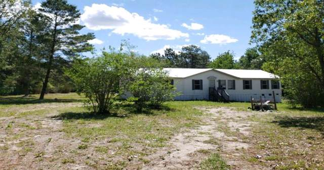 5151 NE 106th Ct, Bronson, FL 32621 (MLS #778689) :: Pristine Properties