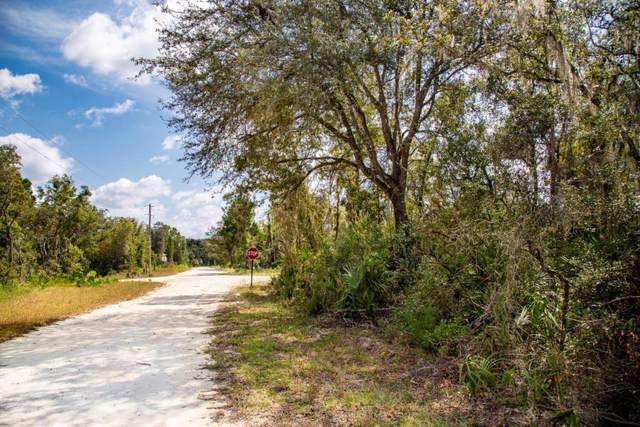 105th Ct NW, Chiefland, FL 32626 (MLS #778779) :: Pristine Properties