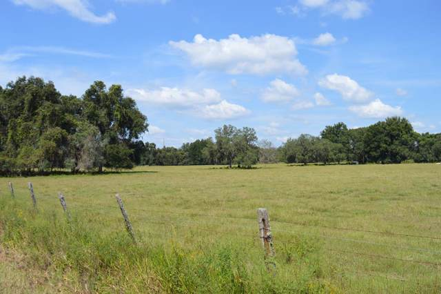 424 Avenue NE, Old Town, FL 32680 (MLS #778811) :: Pristine Properties