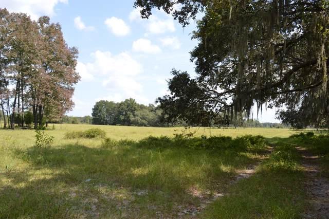 Highway 349 NE, Old Town, FL 32680 (MLS #778814) :: Pristine Properties
