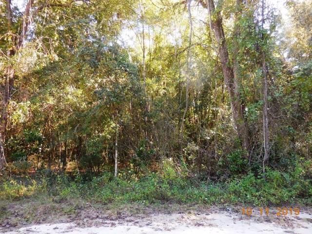 159 Ave NE, Old Town, FL 32680 (MLS #778853) :: Pristine Properties
