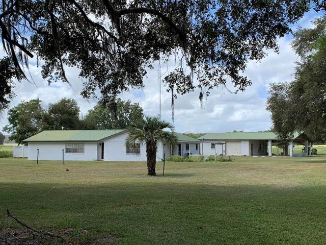 3019 SE 90th Ave, Newberry, FL 32669 (MLS #778933) :: Compass Realty of North Florida