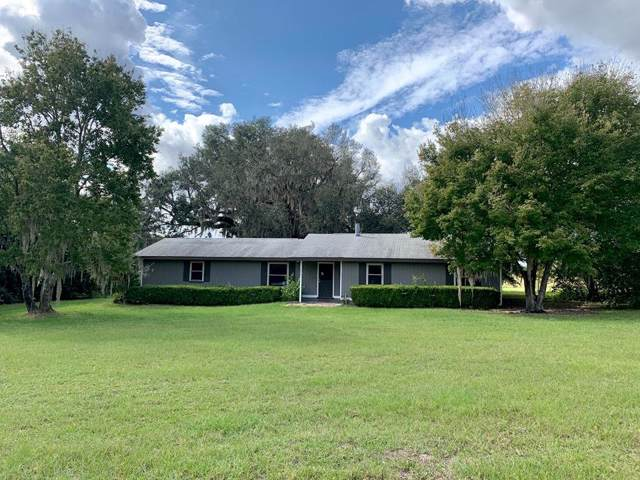 6919 SE 70 Ave, Trenton, FL 32693 (MLS #779012) :: Pristine Properties