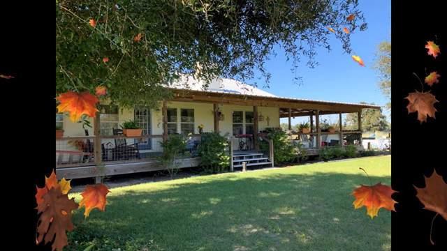 15550 NW 20th Ave, Trenton, FL 32693 (MLS #779086) :: Pristine Properties