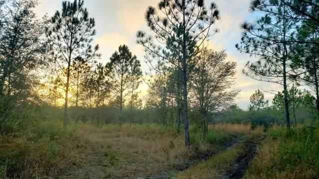 60 ST SW, Cedar Key, FL 32625 (MLS #779283) :: Pristine Properties