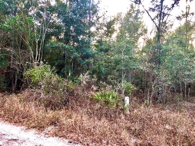 Lot 10 83rd Terrace SE, Newberry, FL 32669 (MLS #779309) :: Pristine Properties