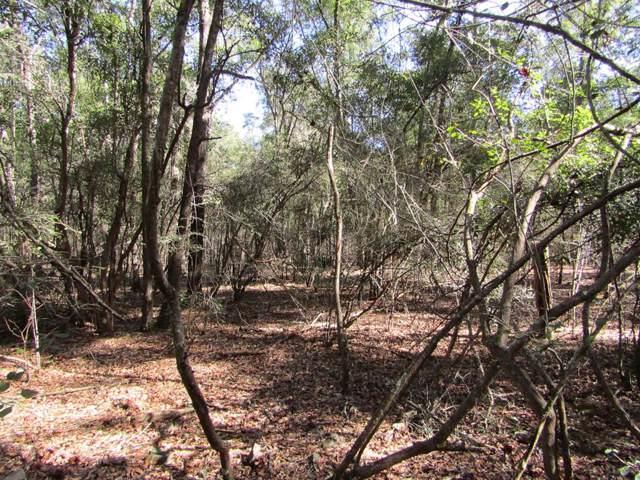 TBD 120th Trail, Branford, FL 32008 (MLS #779342) :: Compass Realty of North Florida