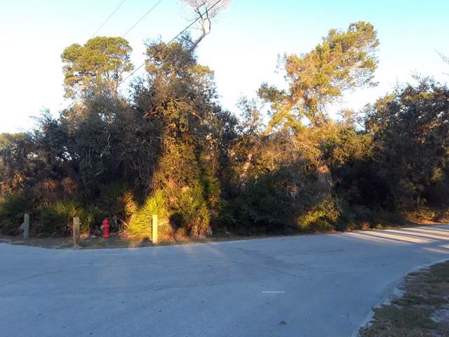 Merle Avenue, Cedar Key, FL 32625 (MLS #779381) :: Better Homes & Gardens Real Estate Thomas Group