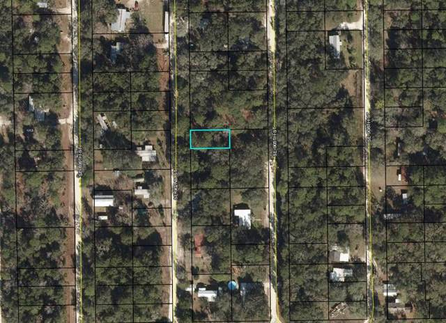 323 902nd Street SE, Old Town, FL 32680 (MLS #779420) :: Compass Realty of North Florida
