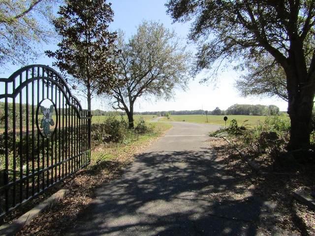 Lot 6 31st Ave NW, Bell, FL 32619 (MLS #779569) :: Pristine Properties