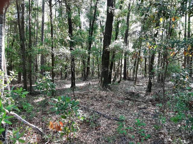 TBD 46th Cir NE, High Springs, FL 32643 (MLS #779815) :: Pristine Properties