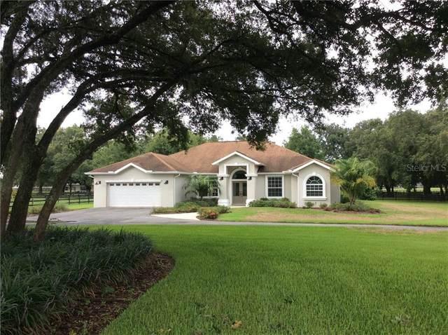 21150 SE 42nd Street, Morriston, FL 32668 (MLS #779834) :: Pristine Properties