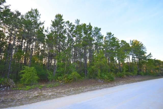 000 Oak Pond Cir NE, Steinhatchee, FL 32359 (MLS #779841) :: Pristine Properties