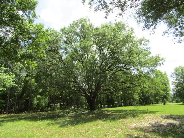 TBD 172nd Lane NW, Trenton, FL 32693 (MLS #779845) :: Pristine Properties