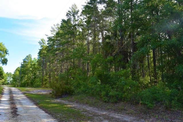 000 Duncan Ln, Steinhatchee, FL 32359 (MLS #779914) :: Pristine Properties