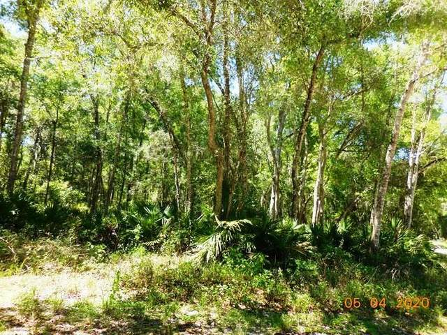 580th St NE, Old Town, FL 32680 (MLS #779931) :: Compass Realty of North Florida
