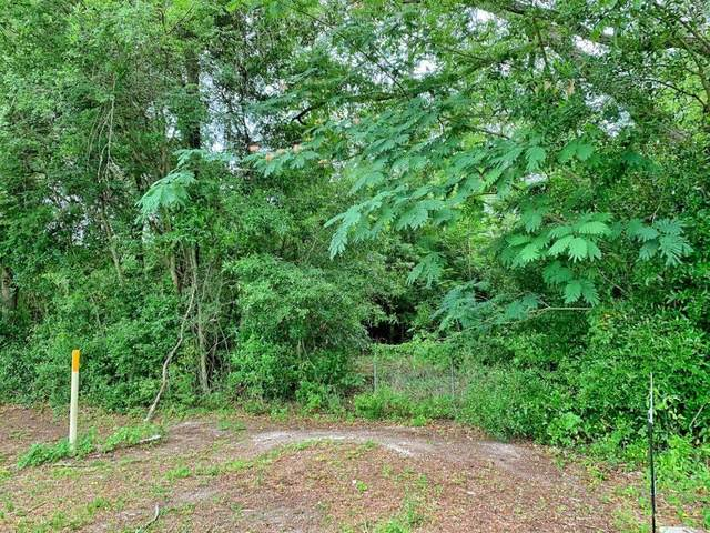 LOT 1 Cr 313 SW, Trenton, FL 32693 (MLS #779994) :: Pristine Properties