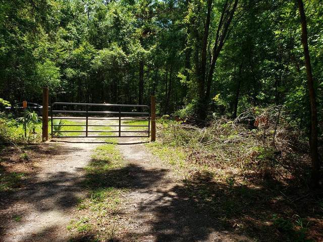 13851 Mitchell Rd NW, Chiefland, FL 32626 (MLS #780050) :: Pristine Properties