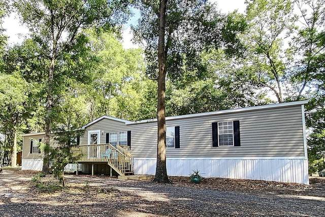 8869 SE 64th Street, Newberry, FL 32669 (MLS #780066) :: Compass Realty of North Florida