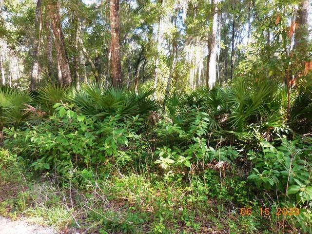 470 Ave NE, Old Town, FL 32680 (MLS #780147) :: Compass Realty of North Florida