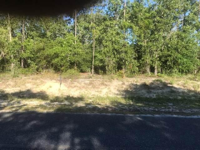 Willstone Way Ne, Steinhatchee, FL 32359 (MLS #780178) :: Compass Realty of North Florida