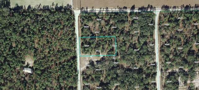 12TH  COURT NW, Bell, FL 32619 (MLS #780224) :: Hatcher Realty Services Inc.