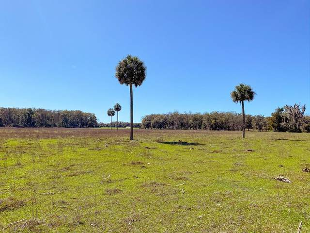 10 ACRES 348 AVENUE NE, Old Town, FL 32680 (MLS #780239) :: Compass Realty of North Florida