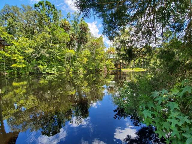 1328 Jr Howell Rd NE, Steinhatchee, FL 32359 (MLS #780332) :: Hatcher Realty Services Inc.