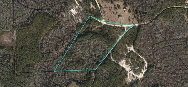 lot 17 337th Avenue SW, Steinhatchee, FL 32359 (MLS #780369) :: Compass Realty of North Florida