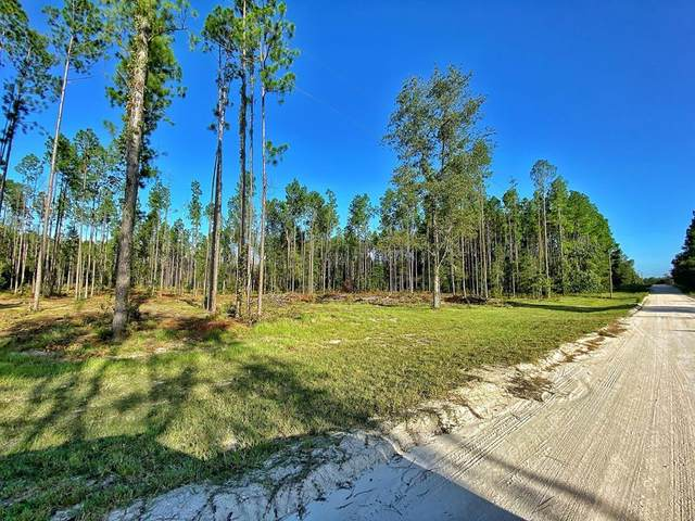 0000 71 Ave NE, High Springs, FL 32643 (MLS #780391) :: Compass Realty of North Florida