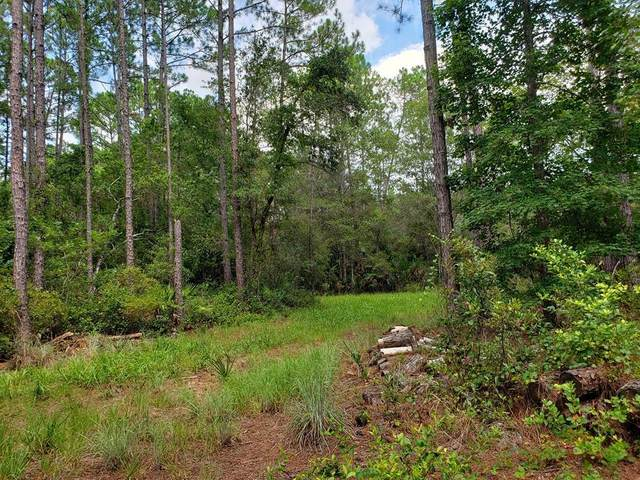 2951 Wild Hog Trail SW, Chiefland, FL 32626 (MLS #780434) :: Compass Realty of North Florida