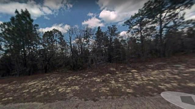 3905 Fantasy Ln W, Citrus Springs, FL 34433 (MLS #780473) :: Hatcher Realty Services Inc.