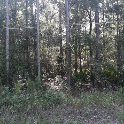 Lot 75 821st Street NE, Old Town, FL 32680 (MLS #780504) :: Compass Realty of North Florida
