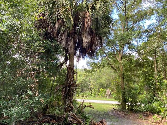 Lot 21 48th Terrace NW, Chiefland, FL 32626 (MLS #780541) :: Bridge City Real Estate Co.