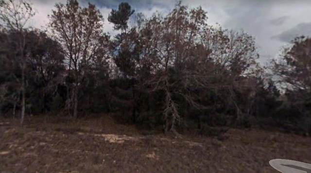 Lot 6 Fisher Court, Ocklawaha, FL 32179 (MLS #780548) :: Compass Realty of North Florida