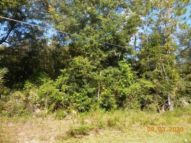 790 St. NE, Old Town, FL 32680 (MLS #780550) :: Bridge City Real Estate Co.