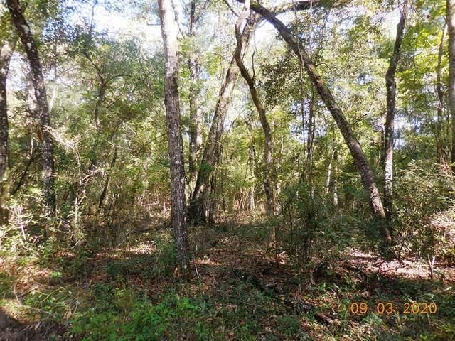 14 Lane SW, Bell, FL 32619 (MLS #780551) :: Hatcher Realty Services Inc.