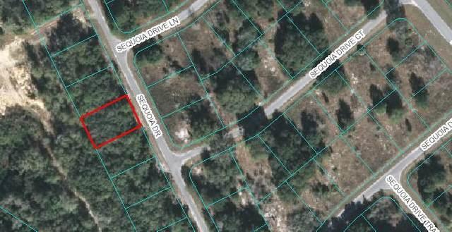 Lot 21 Sequoia Loop Drive, Ocklawaha, FL 32179 (MLS #780556) :: Better Homes & Gardens Real Estate Thomas Group