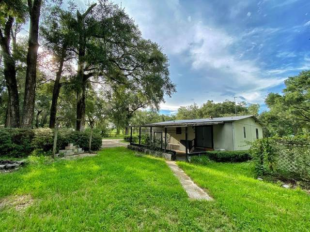 8079 SE 71 St, Newberry, FL 32669 (MLS #780561) :: Compass Realty of North Florida