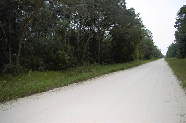 000 796 ST NE, Old Town, FL 32680 (MLS #780575) :: Compass Realty of North Florida