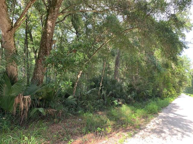 364th Ave NE, Old Town, FL 32680 (MLS #780614) :: Compass Realty of North Florida