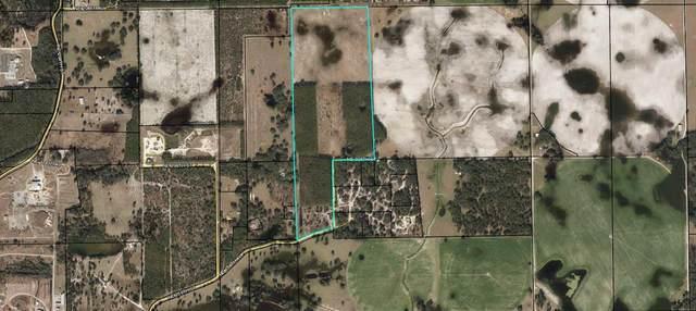 97 326th Street Ne NE, Cross City, FL 32628 (MLS #780635) :: Compass Realty of North Florida