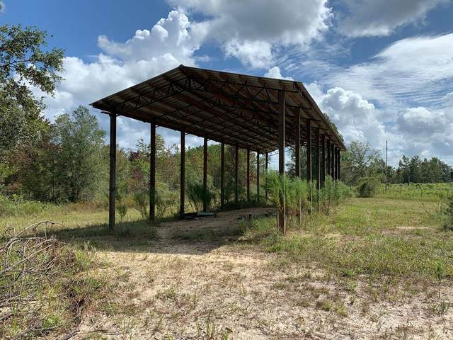 000 661 ST SW, Steinhatchee, FL 32359 (MLS #780675) :: Compass Realty of North Florida
