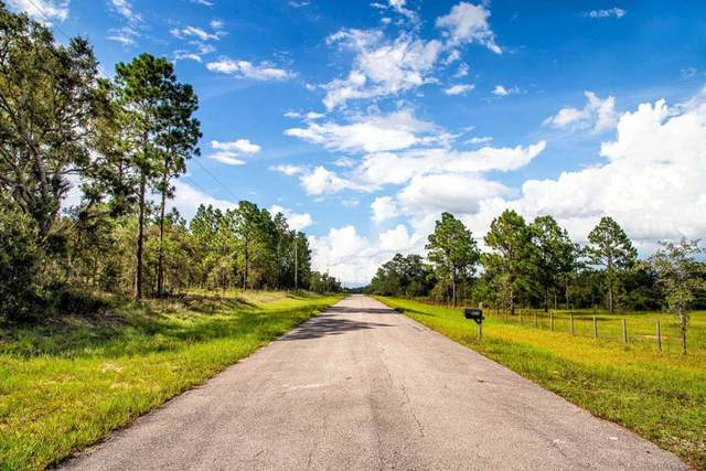 87th Place SE, Dunnellon, FL 34431 (MLS #780685) :: Compass Realty of North Florida