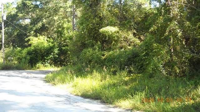 Lot 13 874th Street NE, Old Town, FL 32680 (MLS #780705) :: Better Homes & Gardens Real Estate Thomas Group