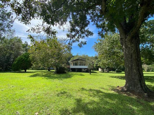 4218 SW 282 St, Newberry, FL 32669 (MLS #780730) :: Compass Realty of North Florida