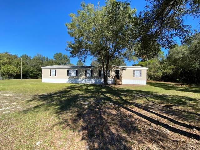 503 NE 389 Ave, Old Town, FL 32680 (MLS #780874) :: Pristine Properties