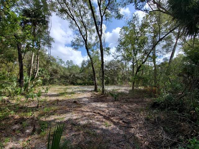 70th Circle NW, Chiefland, FL 32626 (MLS #780902) :: Hatcher Realty Services Inc.