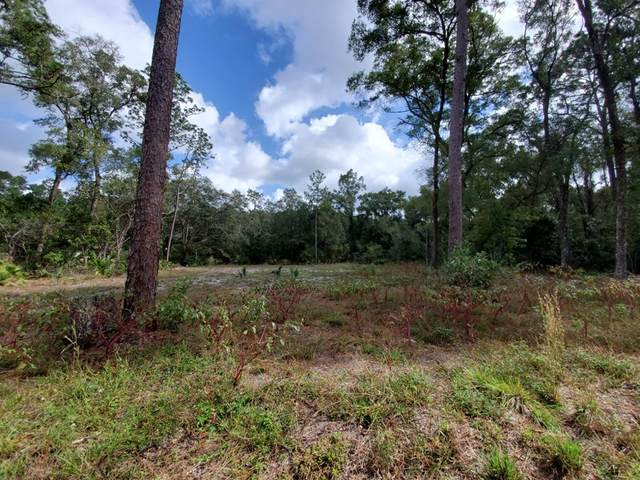 70th Circle NW, Chiefland, FL 32626 (MLS #780904) :: Hatcher Realty Services Inc.