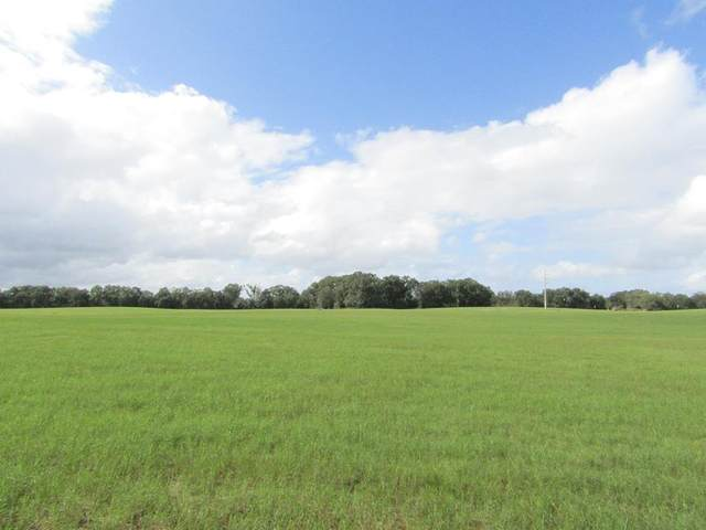 Lot 5 31st Ave NW, Bell, FL 32619 (MLS #780908) :: Compass Realty of North Florida